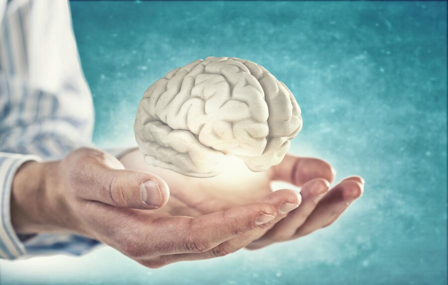 Что мы знаем о тайнах головного мозга?