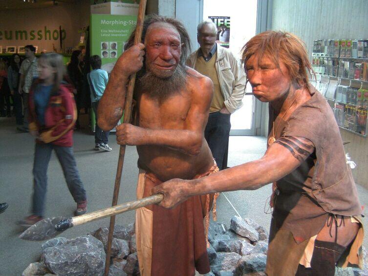 Реконструкция неандертальских мужчины и женщины, Неандертальский музей, Меттман, Германия