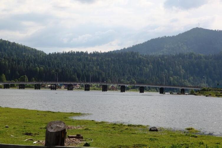 Вот этот мост разделяет Телецкое озеро и Бию