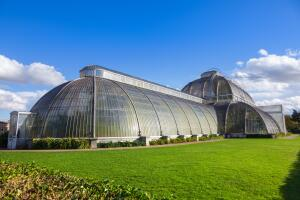 Королевские ботанические сады Кью. Чем они интересны?