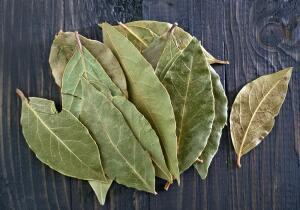 Как использовать лавровый лист с пользой для здоровья?