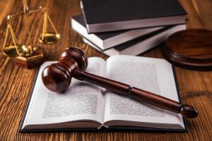 Истцы и ответчики пользуются в суде равными процессуальными правами.