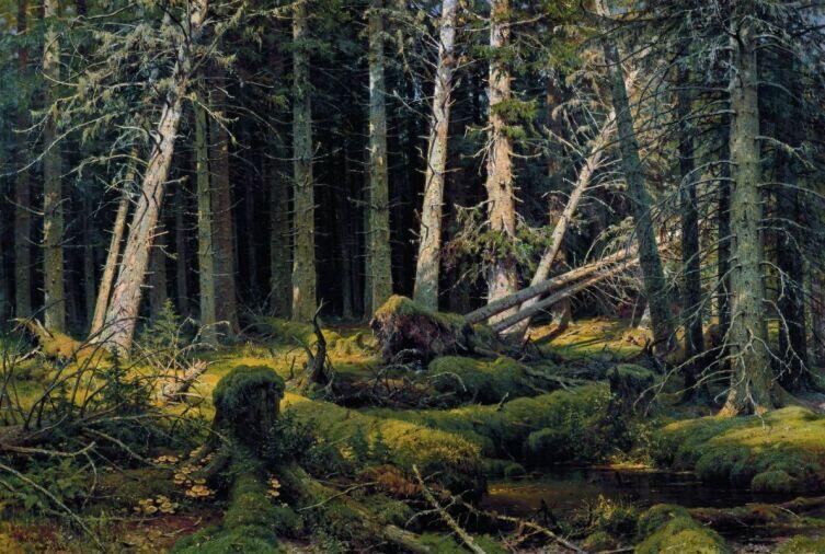 И. И. Шишкин, «Бурелом», 1888 г.