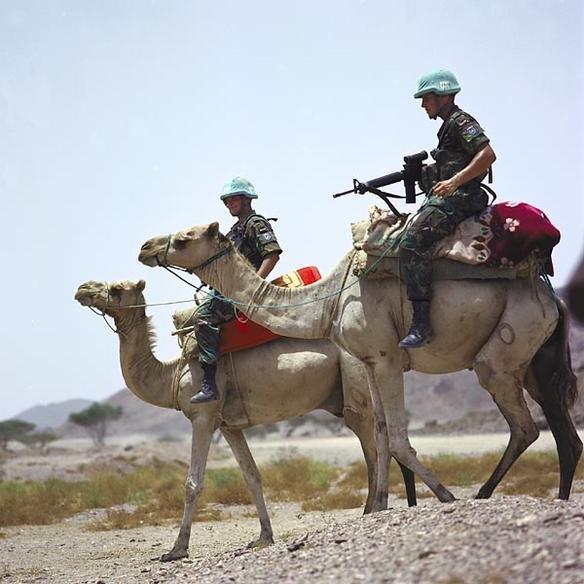Миротворцы ООН в Эритрее