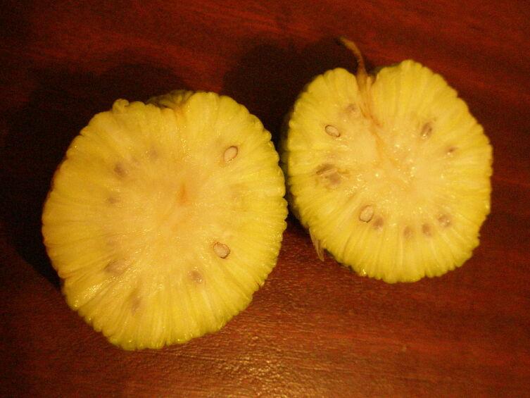 Плод маклюры называют адамовым яблоком (реже китайским, или индийским апельсином)