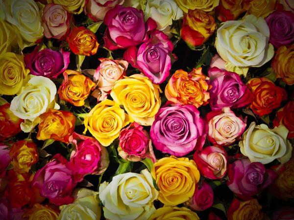 Как выбрать большой букет из маленьких роз?