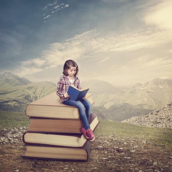 Что подарить книголюбам на Новый год?