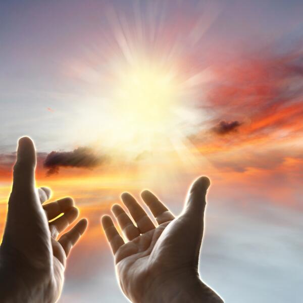 Почему обман — основа человеческого бытия? Часть 1