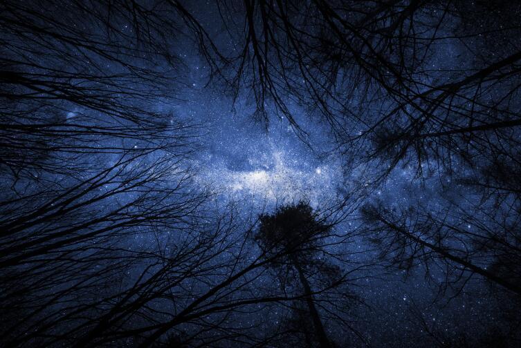 Облака в небо спрятались / Звезды пьяные смотрят вниз / И в дебри сказочной тайги / Падают они...