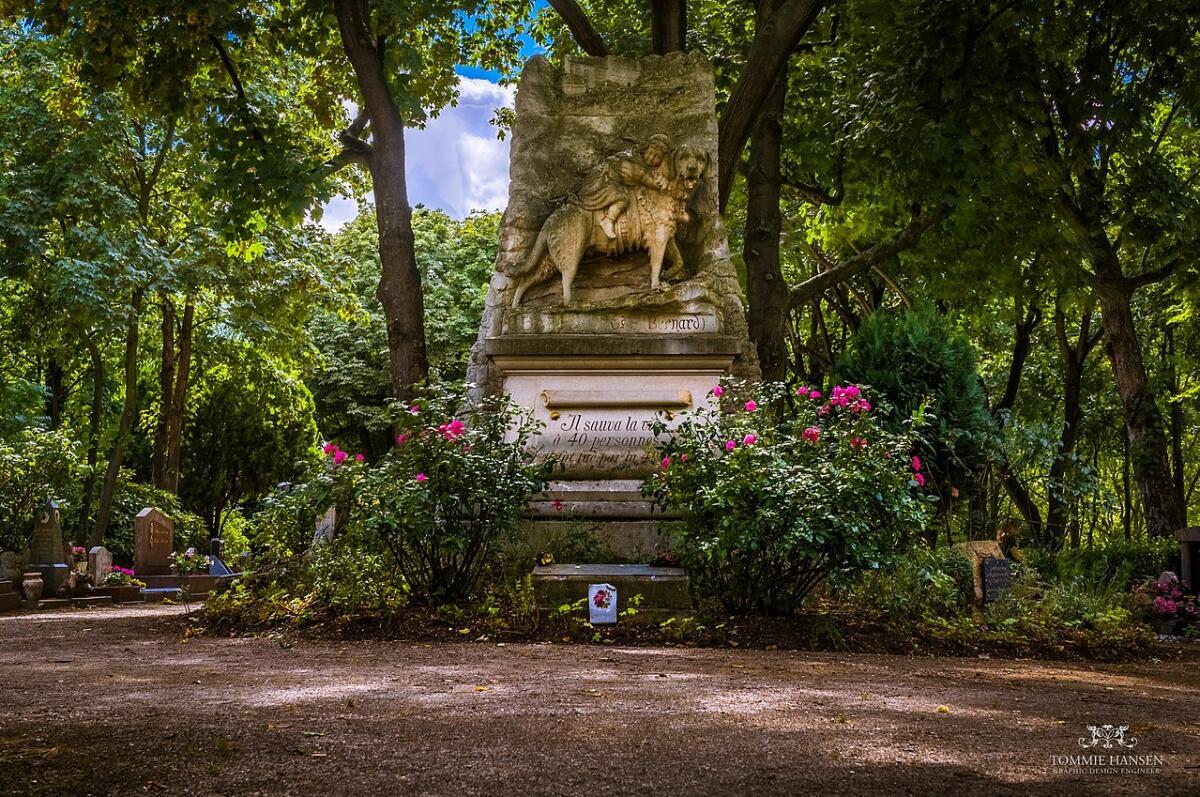 Картинка памятник собаке барри в париже