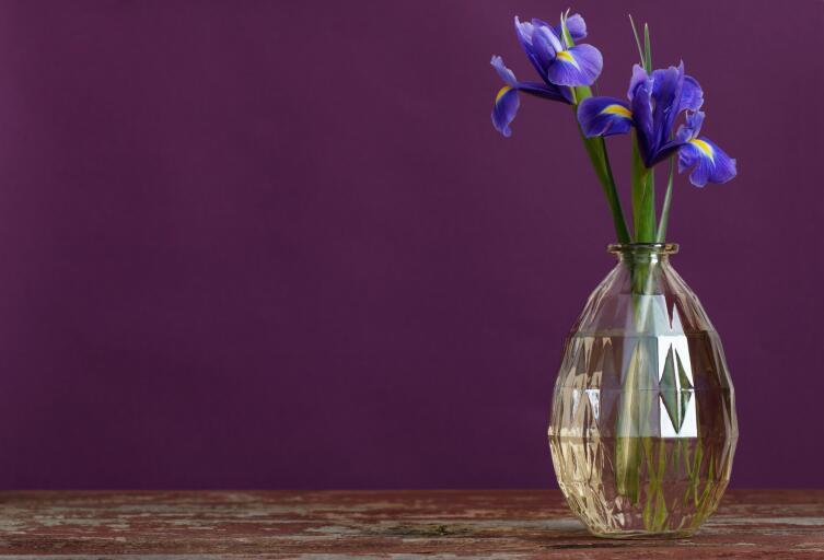 Как сохранить срезанные цветы?