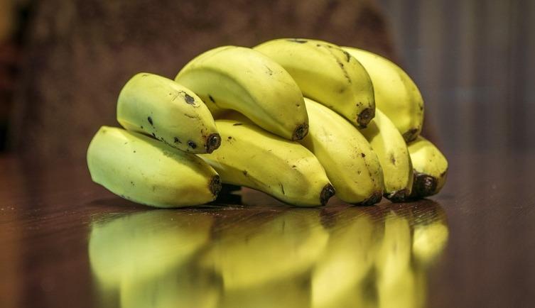 Как вырастить в квартире банан и надо ли содержать в неволе бананового паука?