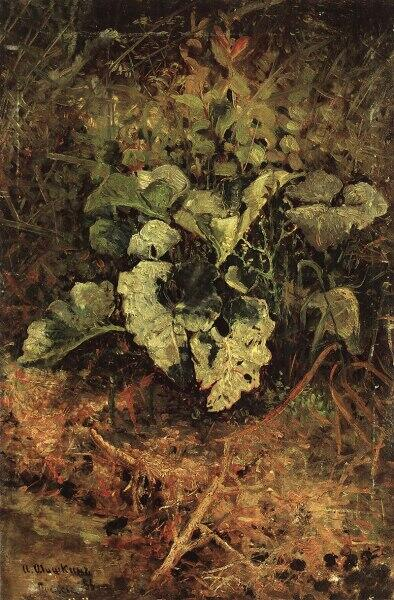 И. И. Шишкин, «Лопухи», 1880-е гг.