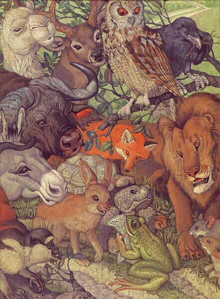 Дон Дэйли, «Басни Эзопа. Черепаха и заяц»