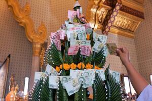 Как вырастить денежное дерево? Приметы в третьем тысячелетии