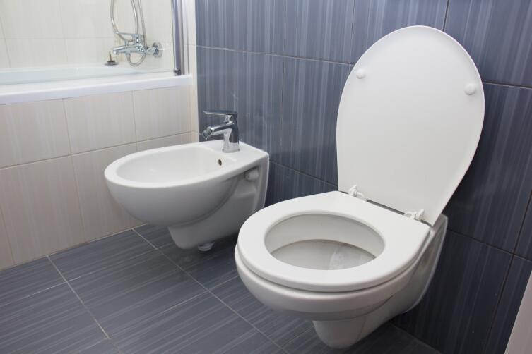 Для установки биде требуется место, душ в этом отношении значительно выигрывает