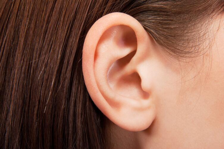 Почему первыми жертвами мороза становятся уши?