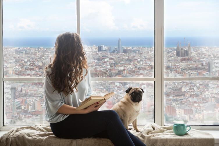 Удобно ли отдыхать в Барселоне с собаками?