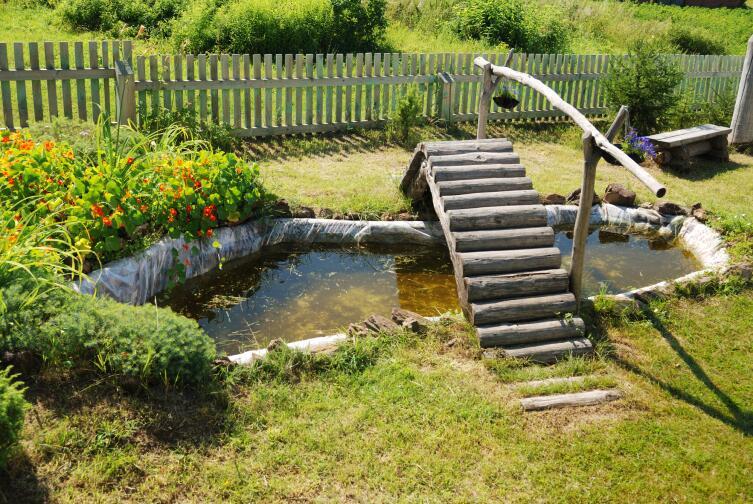 Как создать миниатюрный водоем на даче своими руками?