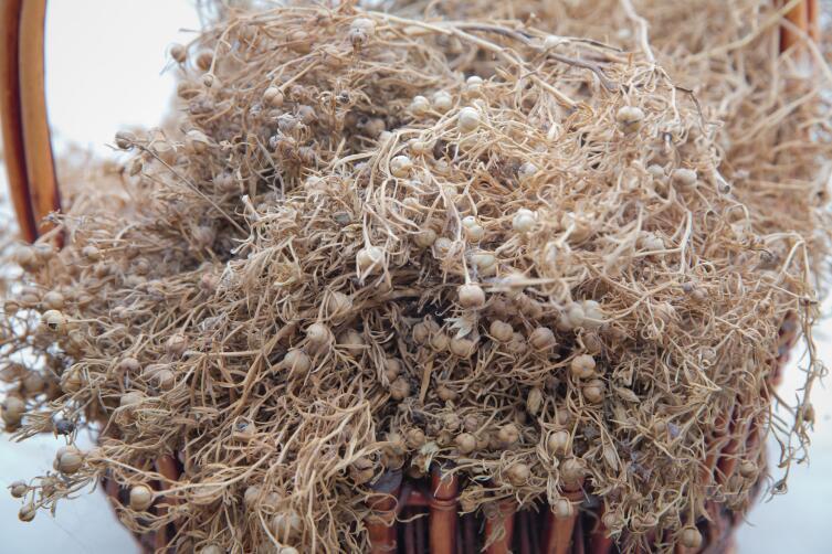 В засушенном виде трава продается на любом среднеазиатском базаре