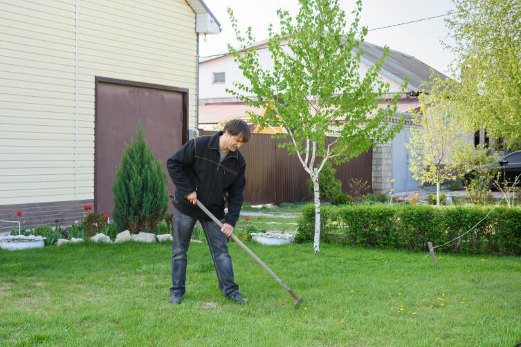 Какие работы на газоне проводятся весной?