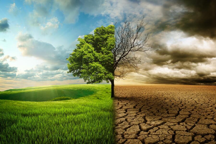 Чем грозит человечеству глобальное потепление?