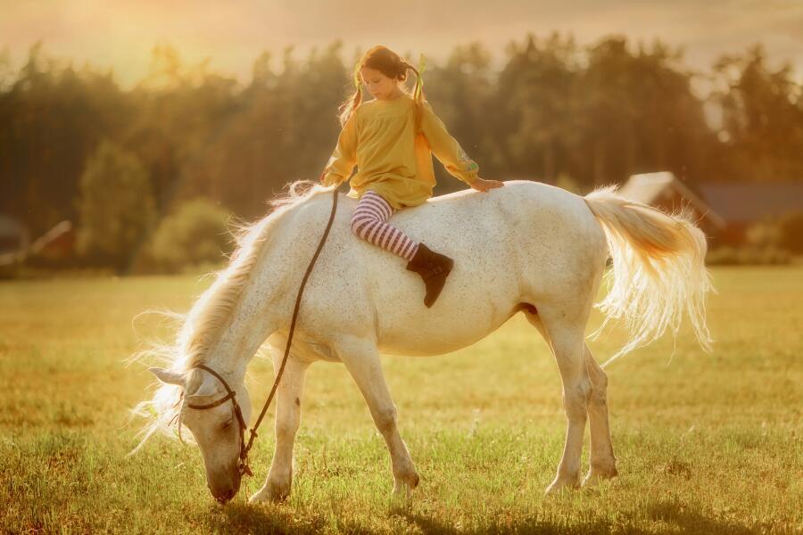 Пеппи Длинныйчулок на лошади