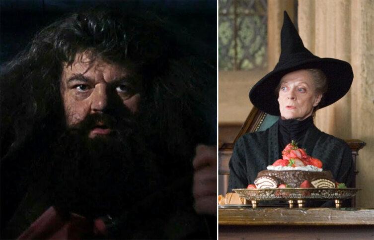 Хагрид и Макгонагалл. Кадр из кинофраншизы «Гарри Поттер»