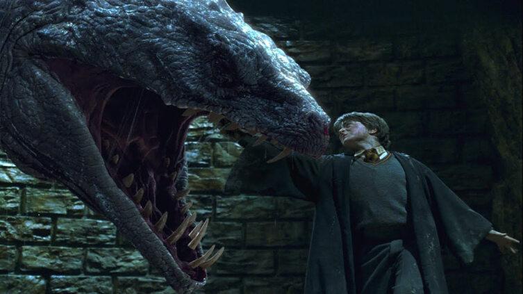 Гарри и Василиск. Кадр из кинофраншизы «Гарри Поттер»