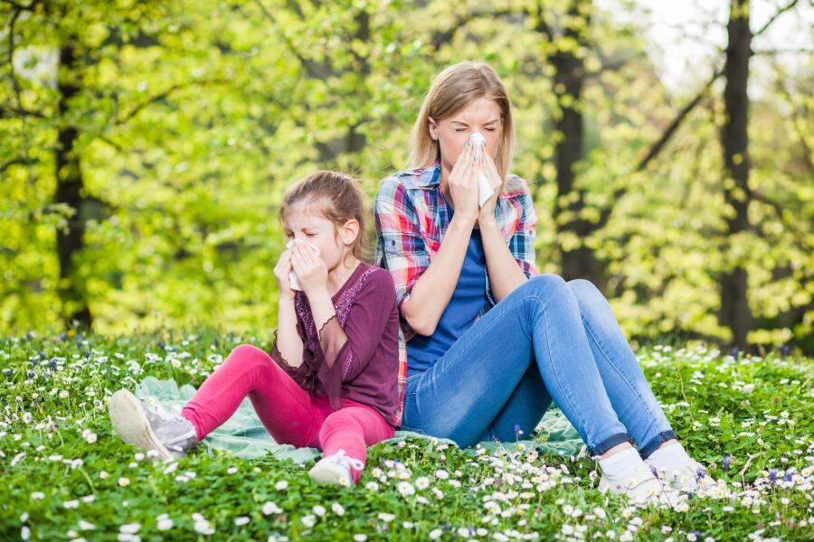 Как дать отпор несносной аллергии?