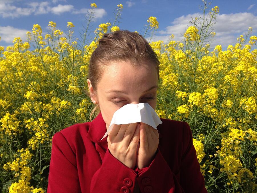 Поллиноз. Что нужно аллергикам для хорошего самочувствия?
