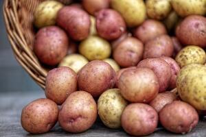 Стоит ли пить картофельный сок?