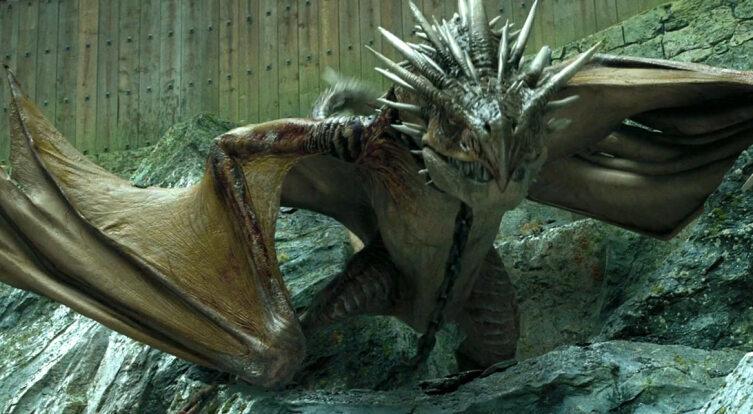 Дракон Венгерский хвосторог. Кадр из кинофраншизы «Гарри Поттер»