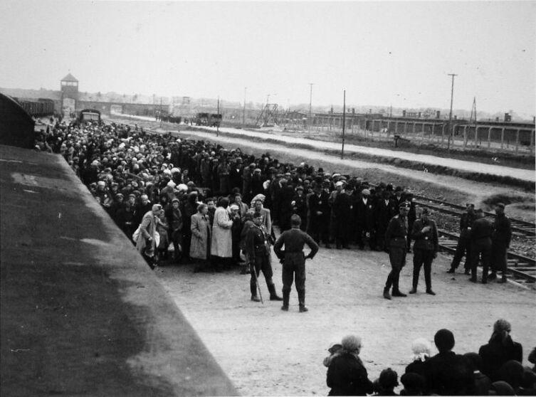 Прибытие заключенных в концлагерь Освенцим. Первый этап отбора