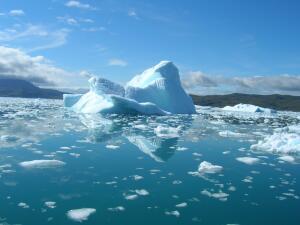 Что такое айсберги и чем они полезны?