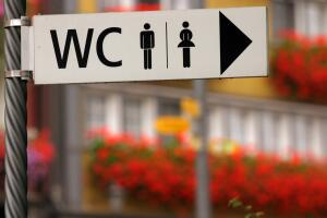 Что может шокировать туриста в разных странах мира? Необычные туалеты
