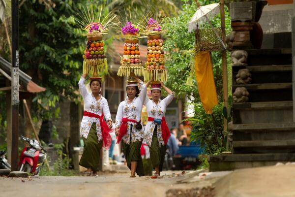 Какие фрукты привозят туристы из Юго-Восточной Азии?