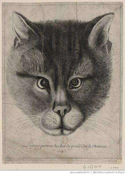 Подлинный портрет кота великого князя Московии