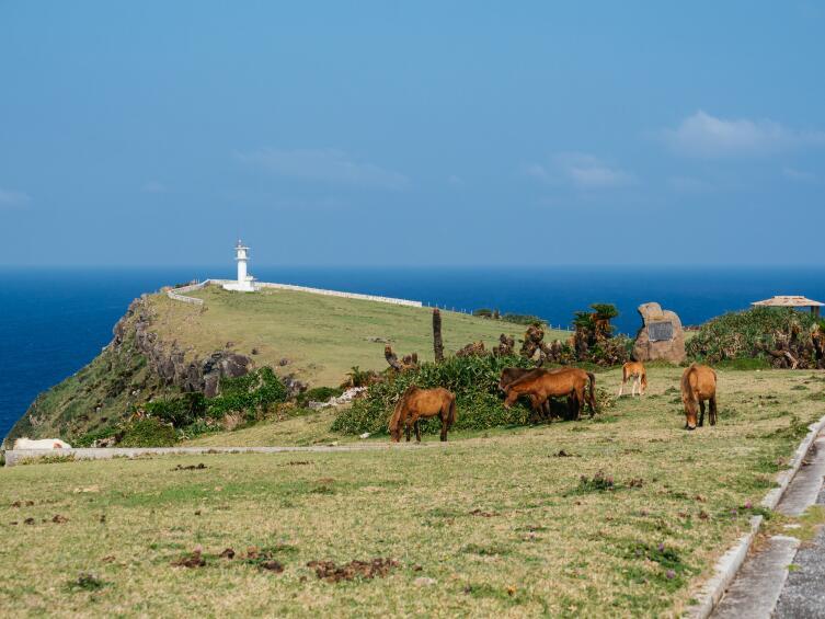 Вид острова Йонагуни