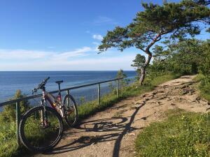 Велосипед или велотренажер — что выбрать для занятий спортом?