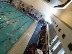 Несомненно, водные занятия в бассейне укрепляют общий иммунитет организма.