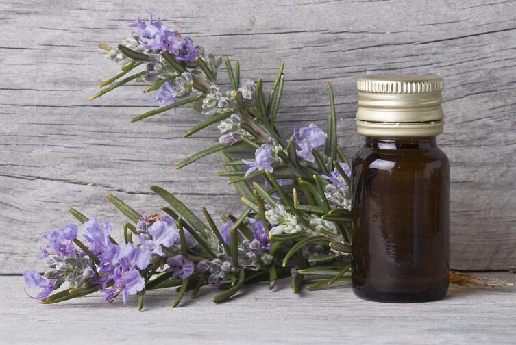 Что и как лечат маслом розмарина в народной медицине?