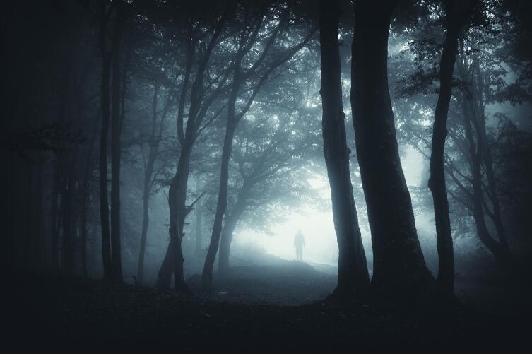 Смерть — это не конец? Лучше нету того света…