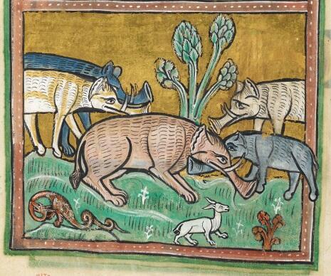 Слоны. Рочестерский бестиарий, ок. 1230—1240 гг.