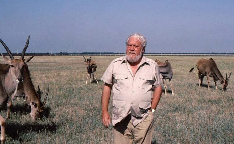 Знаменитый натуралист Джеральд Даррелл в заповеднике Аскания-Нова во время съёмок фильма «Даррелл в России», 1985г.На заднем плане— антилопы канны