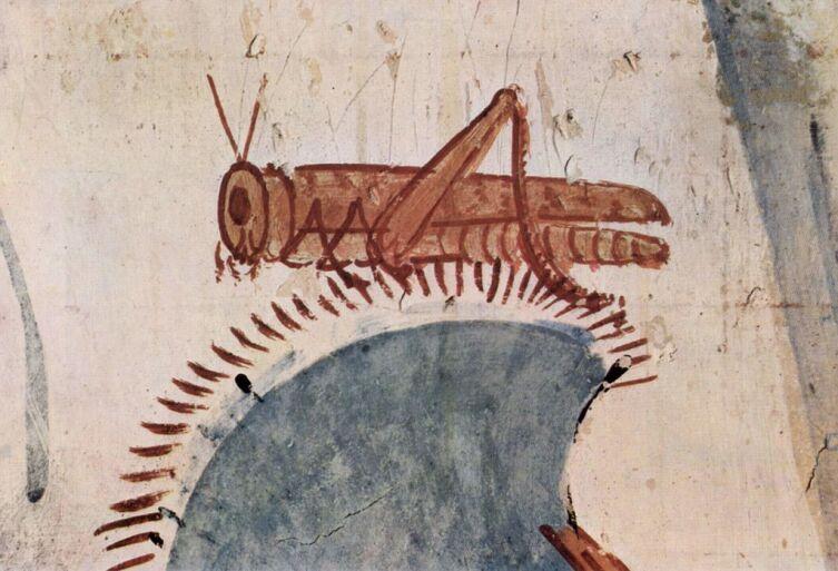 Изображение саранчи в гробнице фараона Хоремхеба, XV век до н.э.