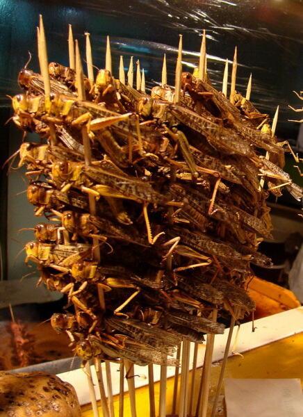 Шашлык из саранчи в Пекине