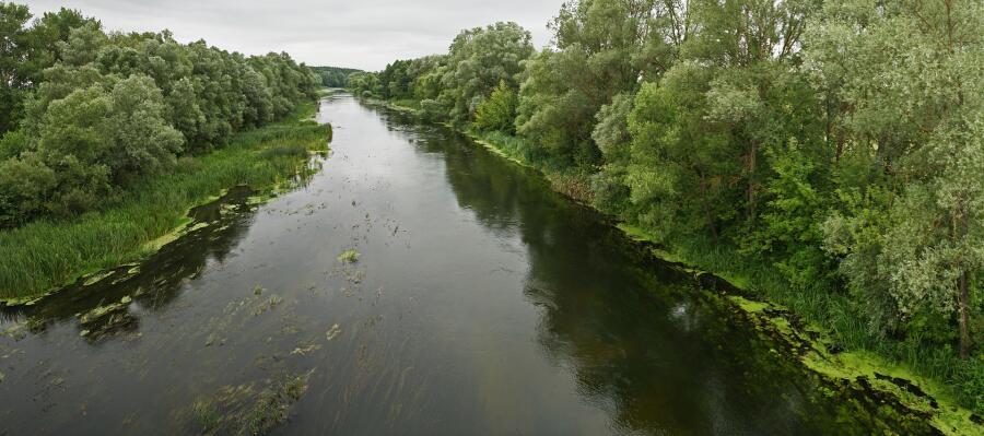 Река Оскол. Волоконовский район Белгородской области, с. Афоньевка