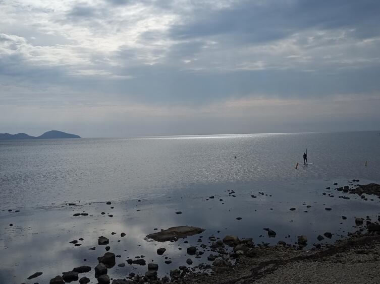 Чёрное море, Коктебель