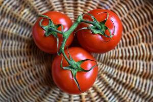 Почему помидоры из магазина странного вкуса?